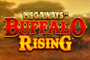Mega Ways Slots